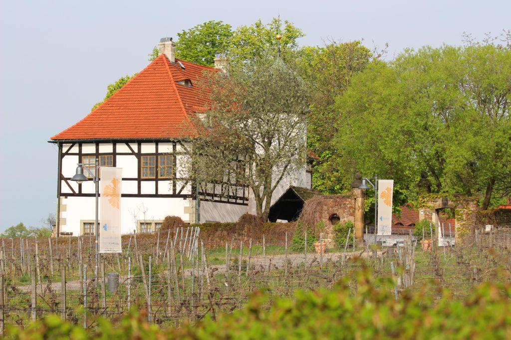 Weingutmuseu und Besucherzentrum Hoflößnitz Radebeul