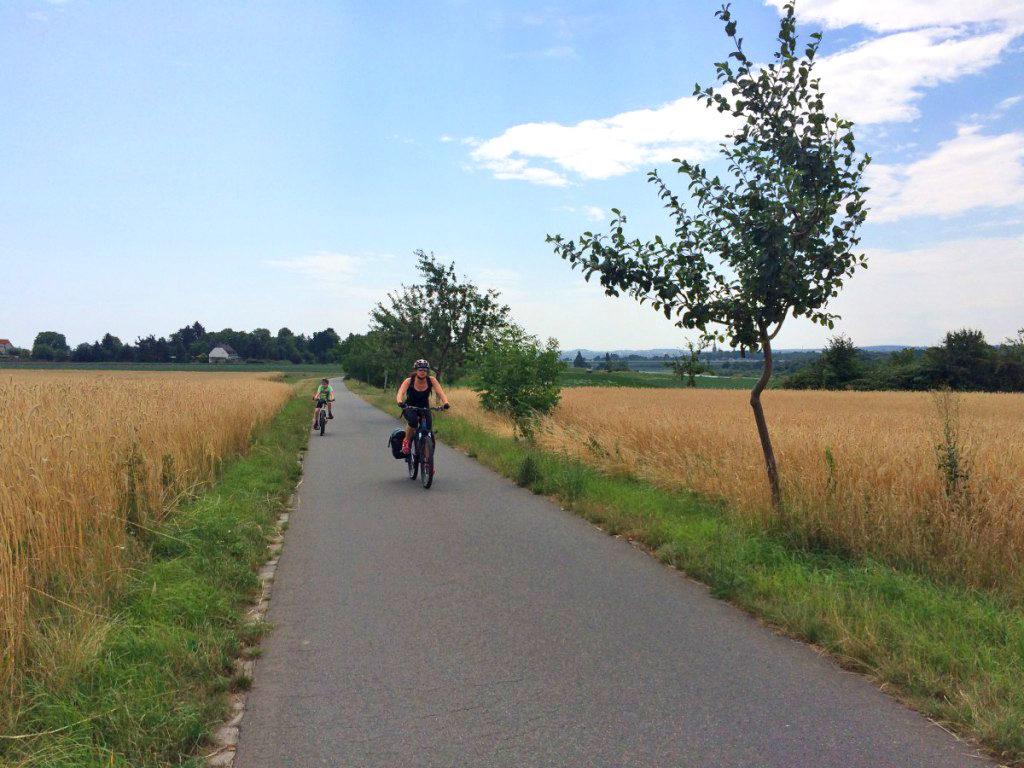 Elberadweg zwischen Meißen und Coswig